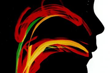 Oracilline (cover)